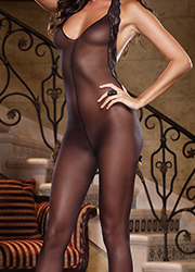 Dreamgirl Sheer Halter Bodystocking with Stretch Lace Trim Zoom 2